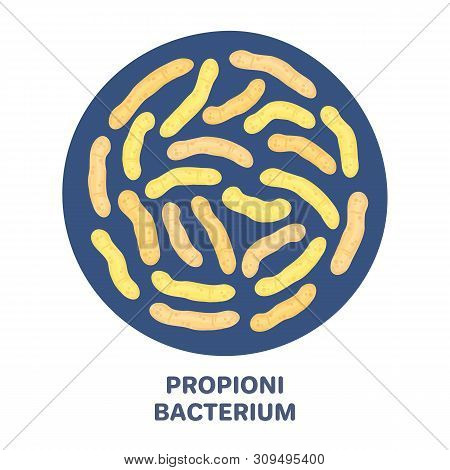 Vector Probiotics In Circular Shape. Propionibacterium. Microbiome. Medicine Or Dietary Supplement.