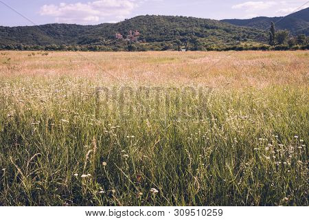 Summer In Countryside Landscape. Fields And Countryside Landscape. Nature Landscape. Summer In Mount