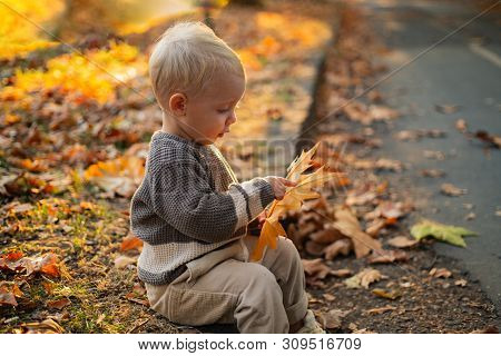 Kids Fashion. Happy Childhood. Childhood Memories. Child Autumn Leaves Background. Warm Moments Of A