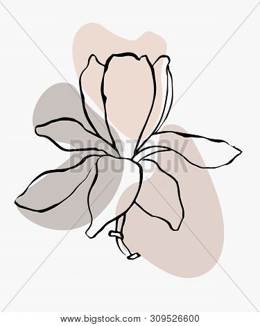 Modern Abstract Shapes Vector Background Or Layout. Contour Line Drawing Flower Of Magnolia.  Modern