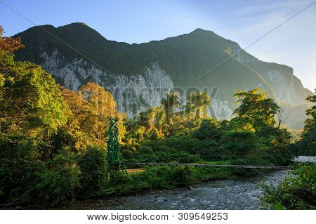 Lush Forest Scene At Morning Sunrise In Gunung Mulu Borneo Malaysia