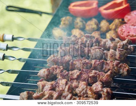 Marinated Barbecue Shashlik Kebab With Curry Winglets And Roasted Pepper And Tomatoes In Chargrill S