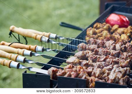 Marinated Barbecue Shashlik Kebab With Curry Winglets And Roasted Pepper In Chargrill Semifinished O