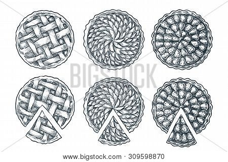 Fresh Baked Sliced Lattice Pie, Isolated On White Background. Vector Hand Drawn Sketch Bakery Menu D