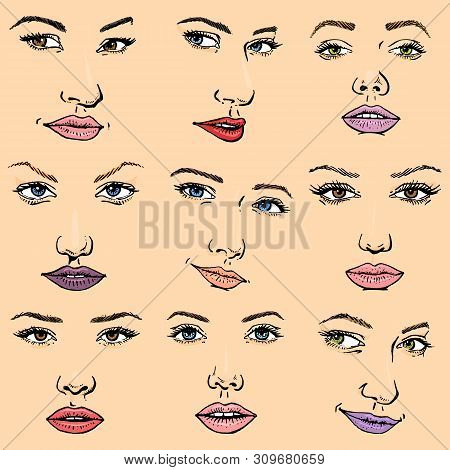 Woman Face Vector Female Facial Portrait Of Beautiful Girl Fashion Faced Care And Beautiful Women Fa