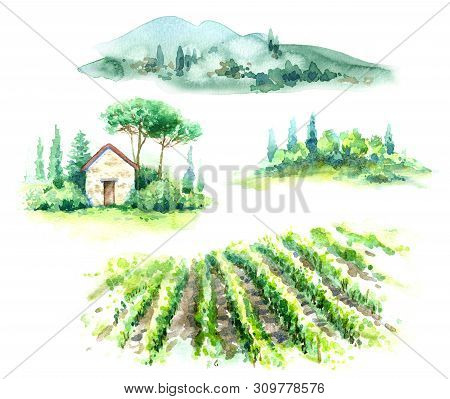 Hand Drawn Fragments Of Rural Scene With Vineyard, Hill, Trees And Bushes Watercolor Sketch. Fragmen