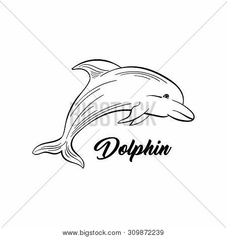 Dolphin Monochrome Flat Vector Illustration. Sea Animal, Intelligent Mammal Freehand Sketch. Saltwat