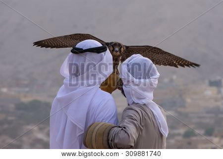 A Pair Of Emirati Falconers Hold A Peregrine Falcon  (falco Peregrinus) In The United Arab Emirates