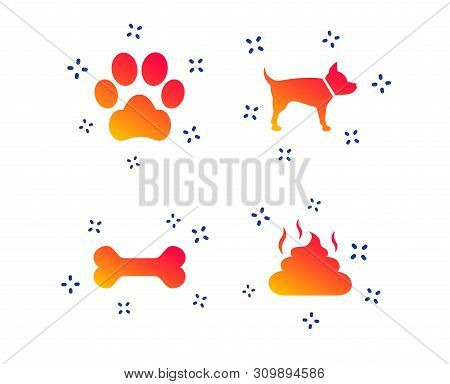 Pets Icons. Dog Paw And Feces Signs. Clean Up After Pets. Pets Food. Random Dynamic Shapes. Gradient