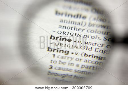 The Word Or Phrase Brine In A Dictionary