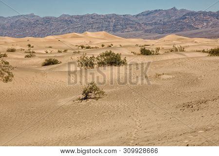 Mesquite Flat Sand Dunes, Death Valley National Park, Usa