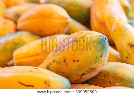 Papaya In The Market. Fruit Of Orange Pulp With Countless Small Seeds. Exotic Tropical Fruit From Br