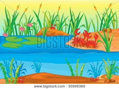 illustration of nature scence on a whote background