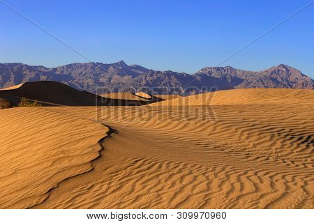 poster of Sand dunes in a desert landscape in Death Valley California.  The vast barren land is dry and arid due to droughts result of global warming and climate change.