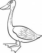coloring page illustration of funny farm goose poster