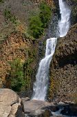 At base of El Salto de Nogal waterfall near canyons outside village of Tapalpa in Jalisco Mexico poster