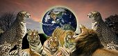Creative concept image of animal wildlife protecting the planet Earth as it belongs to them as well as humans poster