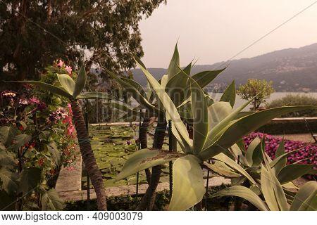 Italy Piemont Lago Maggiore
