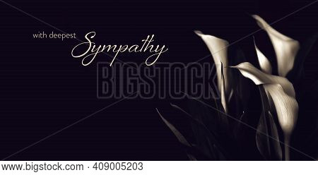 Sympathy Card With White Calla Lily Flowers