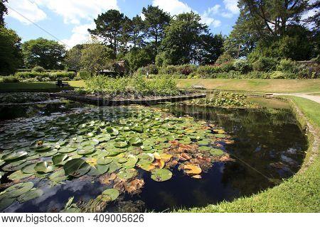 Saltash (england), Uk - August 21, 2015: A Small Lake In Cotehele Park, Near Saltash,  Cornwall, Eng