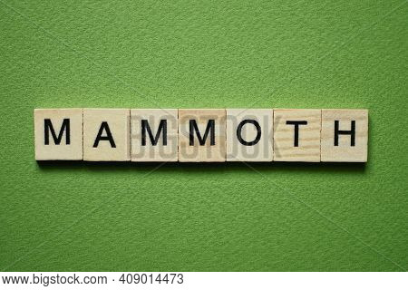 Gray Word Mammoth Made Of Wooden Square Letters On Green Background