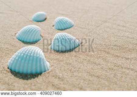 Summer Sale With Seashells, Starfishes On Sand Ocean Beach Background. Tranquil Beach Scene With Cop