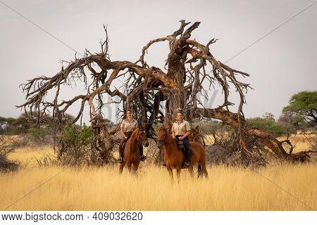 Two Women On Horseback Alongside Dead Tree