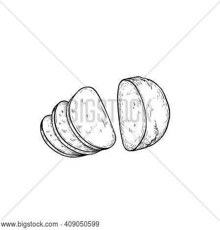 Mozzarella Cheese Sliced. Top View. Hand Drawn Sketch Style Drawing Of Traditional Italian Cheese Ma