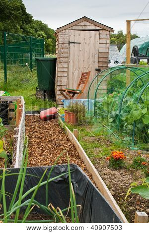 Garden shed on allotment