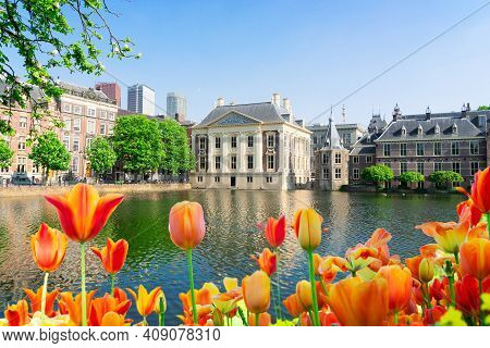 City Center Of Den Haag - Mauritshuis And With Tulip Flowers Netherlands