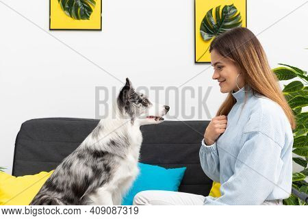 A Young Adult Sits With A Dog In The Living Room At Home Practicing Obedience. The Room Of The Livin