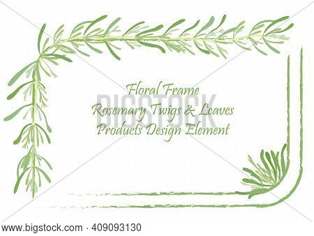Squarish Frame With Rounded Corners And Hand Drawn Rosemary Twigs And Leaves. Rough Brush Strokes Fo