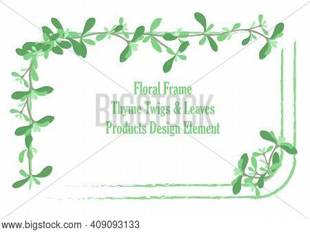 Squarish Frame With Rounded Corners And Hand Drawn Thyme Twigs And Leaves. Rough Brush Strokes For S