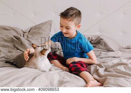 Caucasian Boy Sitting On Bed In Bedroom At Home And Petting Stroking Oriental Cat. Child With Domest