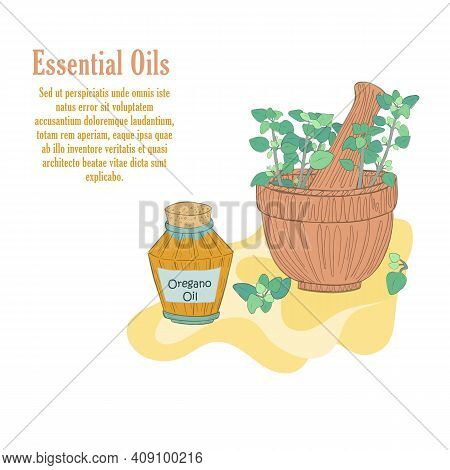 Hand Drawn Mortar With Oregano Herbal And Vial With Oregano Essential Oil. Isolated Composition In O