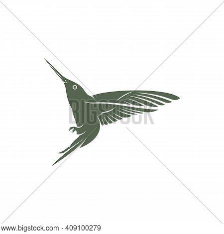 Hummingbird Design Vector Illustration, Creative Hummingbird Logo Template, Icon Symbol
