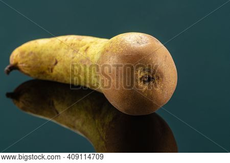 Conference Pear It Is An Autumn Cultivar, Cultivated Variety Of The European Pear, Pyrus Communis