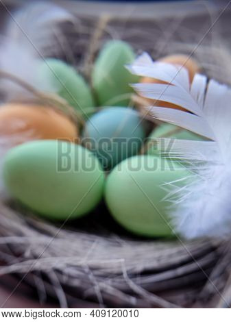 Stylized Happy Easter card,  unfocused closeup  with colorful eggs in nest , feathers and straw.