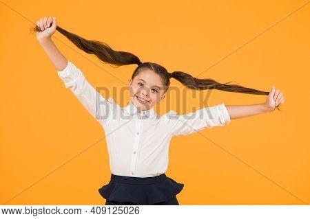 Schoolgirl Pupil Long Hair Cute Ponytails Hairstyle. Educational Program. Adorable Schoolgirl. Homes