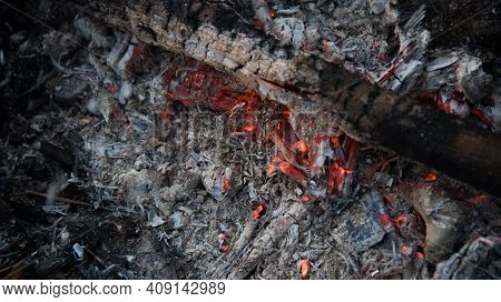 Coals That Smolder In The Grill. A Dying Fire. Living Fire.