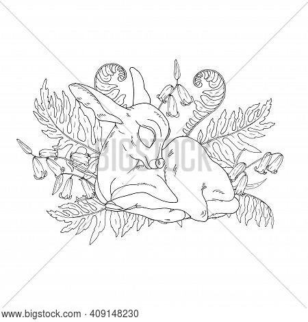 Little Fawn Among Fern Leaves And Flowers, Forest Deer, Coloring Book Page, Black And White Vector I