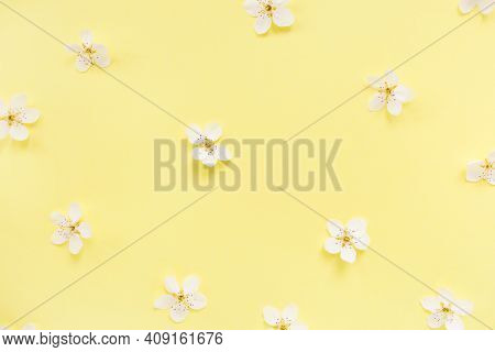 Floral Pattern Of White Spring Or Summer Flowers On Yellow Background. Copy Space For Your Text. Fla