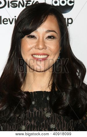 LOS ANGELES - JAN 10:  Yunjin Kim attends the ABC TCA Winter 2013 Party at Langham Huntington Hotel on January 10, 2013 in Pasadena, CA