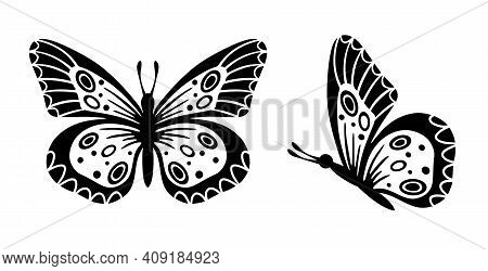 Drawing Butterfly. Stencil Butterfly, Moth Wings And Flying Insects. Butterflies Tattoo Sketch, Fly