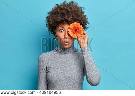 Horizontal Shot Of Surprised Afro American Woman Holds Orange Gerbera Over Eye Gazes With Bugged Eye