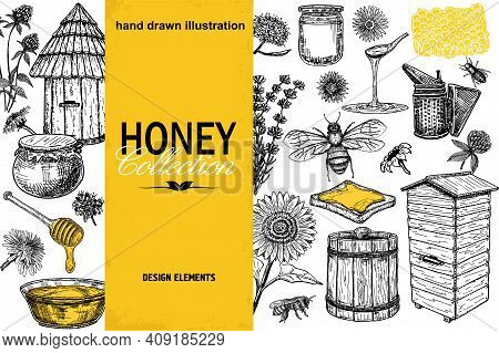 Vector Honey Elements Set. Hand Drawn Sketch Honey Jar, Spoon, Stick, Cells, Beehive, Honeycomb. Ink