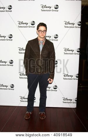LOS ANGELES - JAN 10:  Bradford Anderson attends the ABC TCA Winter 2013 Party at Langham Huntington Hotel on January 10, 2013 in Pasadena, CA