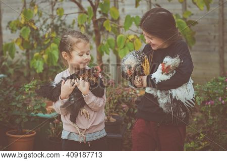 Two Little Girl In Tops And Trousers Holding Three Cockerels