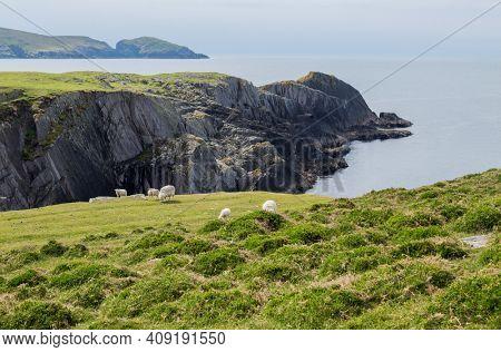 Rocky shore in Dursey Island.County Cork, Ireland