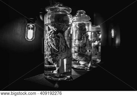 Deceased Fetuses In Glass Flasks. Virus. Black And White